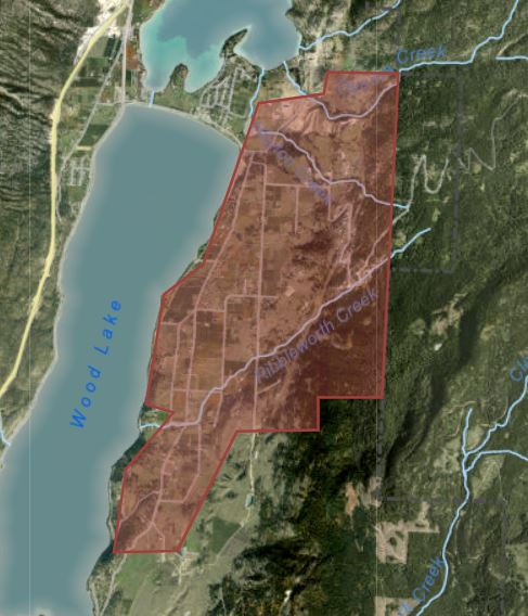 BWN map 2021-07-24