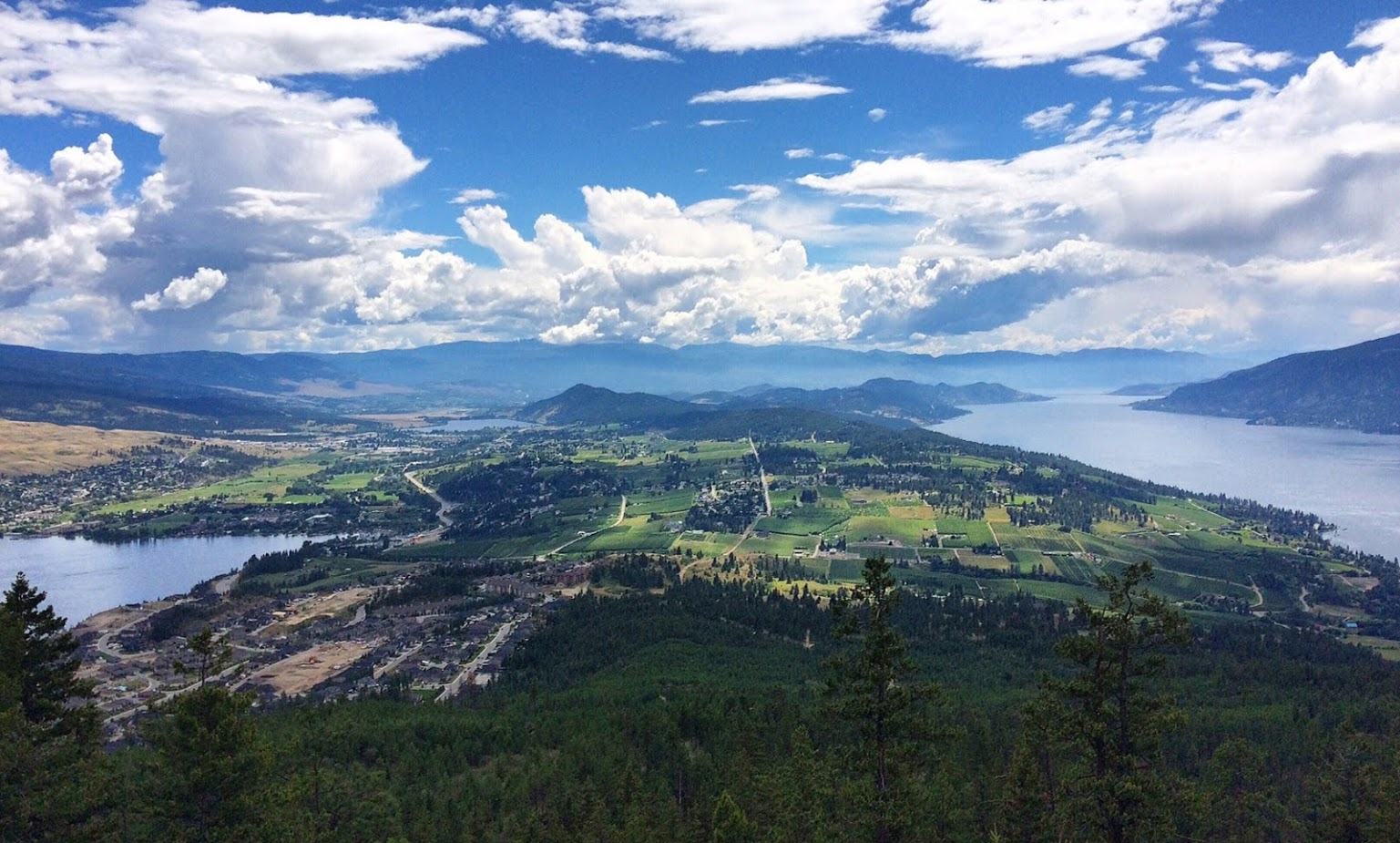 view over Okanagan Lake and Wood Lake from the top of Spion Kop